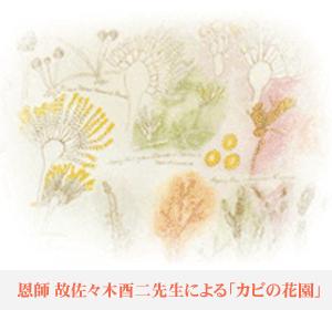 恩師 故 佐々木酉二先生による「カビの花園」