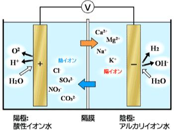 飲用アルカリ性電解水生成装置の概略図